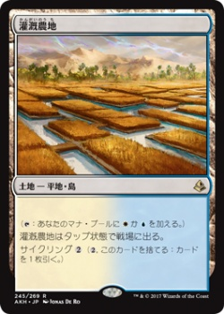 【JPN】《灌漑農地/Irrigated Farmland》土地R[AKH]